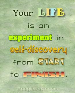 life-experiment